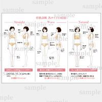 骨格診断 説明資料&各イラスト 【ベージュ】