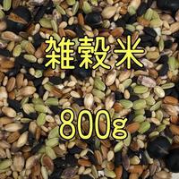 雑穀米   800g    送料無料