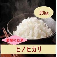 令和元年 愛媛県産     ヒノヒカリ 玄米 20kg