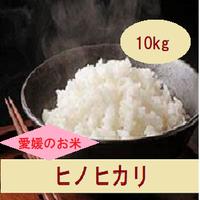 令和元年 愛媛県産     ヒノヒカリ 玄米 10kg