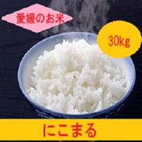 令和元年 愛媛県産     にこまる 玄米 30kg
