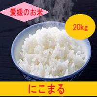 令和元年  愛媛県産     にこまる 玄米 20kg