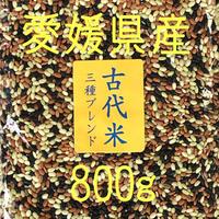 古代米3種ブレンド      800g 愛媛県産  送料無料