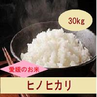 令和元年 愛媛県産     ヒノヒカリ 玄米 30kg