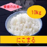 令和元年  愛媛県産     にこまる 白米 10kg