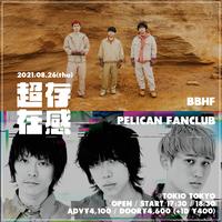 【 BBHF × PELICAN FANCLUB 】超存在感 vol.2