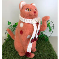 オッドアイのピンク色の猫☆