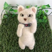 立ちポーズベージュ色の猫☆