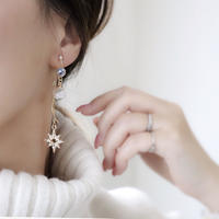 breit starピアス/イヤリング