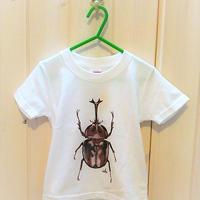 みんな大好き!!カブトムシのプリントキッズtシャツ