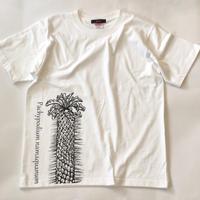 光堂 プリントTシャツ ホワイト*oneno*