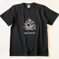 アガベ 'チタノタ'プリントTシャツ ブラック*oneno*