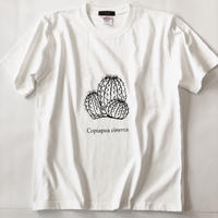 コピアポア 黒王丸 プリントTシャツ ホワイト*oneno*