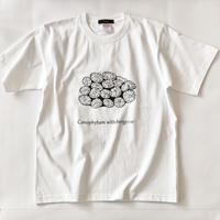 コノフィツム プリントTシャツ ホワイト*oneno*