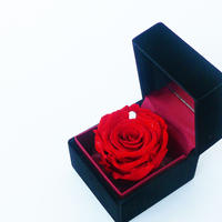 ダイヤモンドプリザーブドローズのジュエリーボックス【red】
