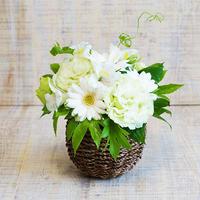【SUMMER GIFT】ペールグリーンのお花のバスケットアレンジメント