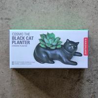 Cosmo The Black Cat Plante