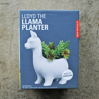 Lloyd The Llama Planter