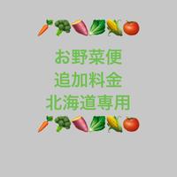 お野菜便追加料金 北海道専用