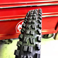 MAXXIS (マキシス)MINION DHF 24×2.40