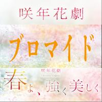 咲年花劇「春よ、強く美しく」個人ブロマイド(4枚セット)