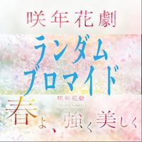 咲年花劇「春よ、強く美しく」ランダムブロマイド