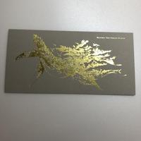 『大洪水の前に』マツダケン装画ポストカード(金ふち)