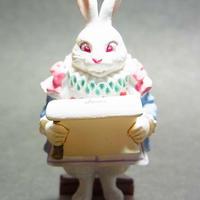 02.法定の白ウサギ