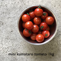 【 ベアーズファーム】 ミニ熊太郎トマト 1kg