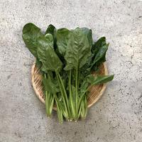 【島根有機野菜】 ほうれん草