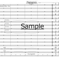 Flamenco【BigBand楽譜】