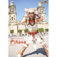 中島翔子オフィシャルフォトブック「Pinata」