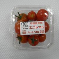 有機ミニトマト