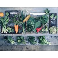【yamsai】六甲山麓界隈産自然野菜詰合わいわい限定ヴァージョン