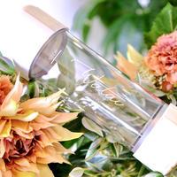 Watai × MERUS PLUS 限定水素ボトル