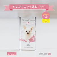 suyarinクリスタルフォト位牌・ミニ【ブルー】  のコピー