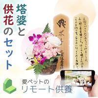 【セット】リモート供養お受付 供花絆・塔婆