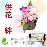 【供花・絆】リモート供養お受付