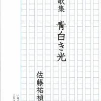 佐藤祐禎歌集『青白き光』