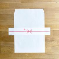 のし紙付 平袋 ホワイト W216×H277