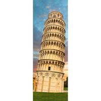 29604  Sights : Tower of Pisa