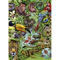 29617  Marion Wieczorek : Flora & Fauna, Rainforest
