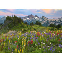 29903  Ed. Humboldt : Tatoosh Mountains