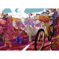 29677  Shan Jiang : Bike Art - Tour in Pink