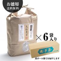 浅煎り丸粒麦茶三角TB【6袋入り:送料無料】