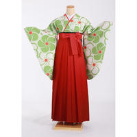 レンタル卒業袴セット 緑/梅405 Y-60-O-5