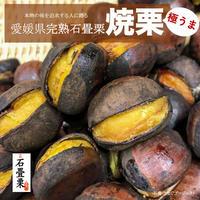 【数量限定:9月受付】完熟石畳栗の焼き栗 700g(350g✕2袋)[冬季常温発送]