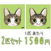 ネコのイラスト【2匹同時購入割引】