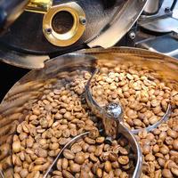 インド SeLection 33 ウォッシュド【浅煎り】豆 or 粉 100g