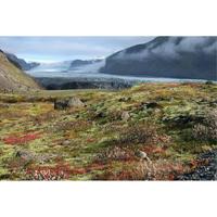 画像データ アイスランド スカフタフェトル氷河 (1)